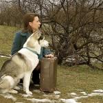PORADNIK: 10 rzeczy, które trzeba zabrać w podróż z psem