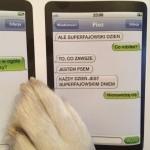 SMS od psa. Taki konkurs!