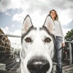 Psie  okruszki (1)