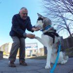 Pan Bruno, co psom zdjęcia robi