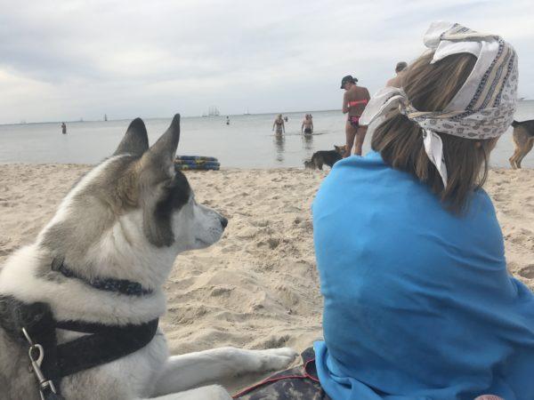 Psia plaża w Międzyzdrojach