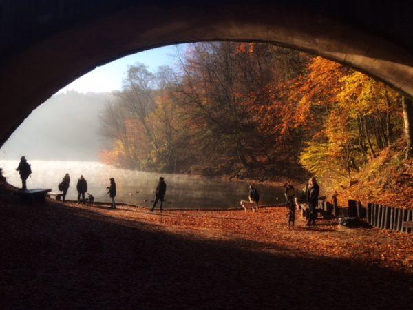 Jezioro Szmaragdowe jesienią